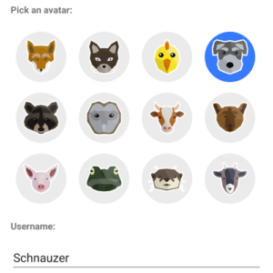 avatar selection